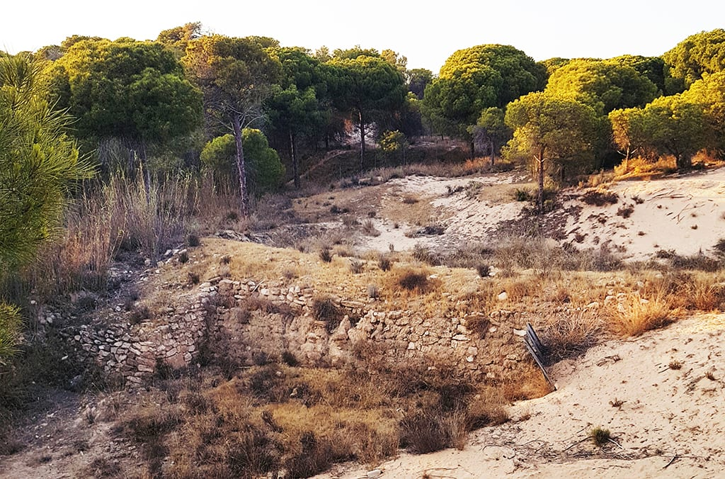 Vista de la muralla de la Ciudad Portuaria de La Fonteta